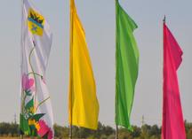 флаги расцвечивания в Оренбурге на улице Гаранькина