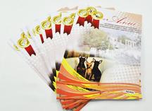 Листовки для Альфа-Сириус: дизайнерская бумага, полноцветная печать