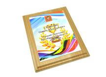 Плакетка для награждения спортсменов - паралимпийцев. Дерево, пластик. Нанесение - сублимация.