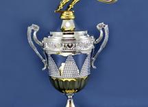Кубок многоуровневый хоккейный